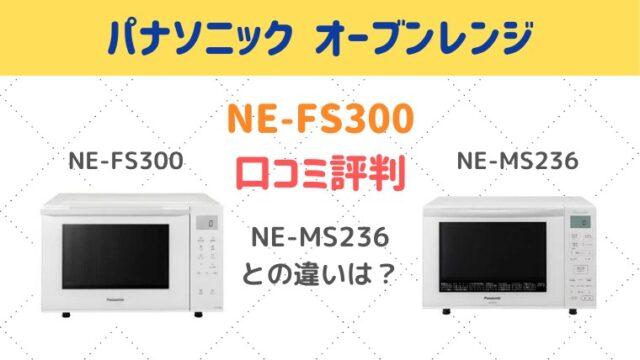NE-FS300