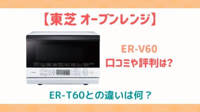 ER-V60